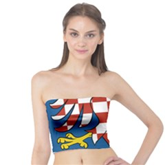 Moravia Coat of Arms  Tube Top