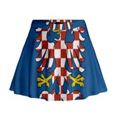 Flag of Moravia Mini Flare Skirt