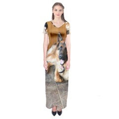 German Shepherd Laying 2 Short Sleeve Maxi Dress