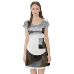 2 German Shepherds In Letter G Short Sleeve Skater Dress