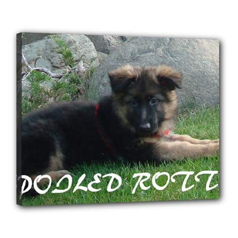 Spoiled Rotten German Shepherd Canvas 20  x 16