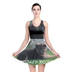 Spoiled Rotten German Shepherd Reversible Skater Dress