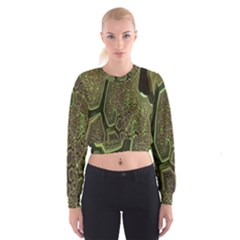 Fractal Complexity 3d Dimensional Women s Cropped Sweatshirt