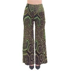 Fractal Complexity 3d Dimensional Pants
