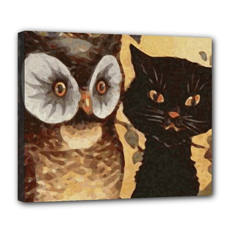 Owl And Black Cat Deluxe Canvas 24  x 20