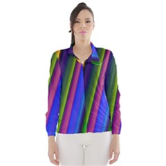 Strip Colorful Pipes Books Color Wind Breaker (Women)