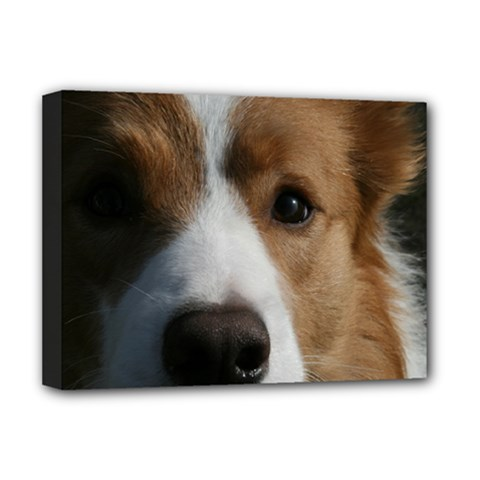 Red Border Collie Deluxe Canvas 16  x 12