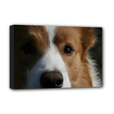 Red Border Collie Deluxe Canvas 18  x 12