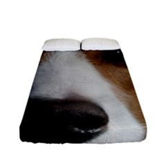 Red Border Collie Fitted Sheet (Full/ Double Size)
