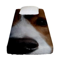 Red Border Collie Fitted Sheet (Single Size)