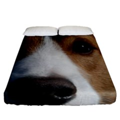 Red Border Collie Fitted Sheet (Queen Size)