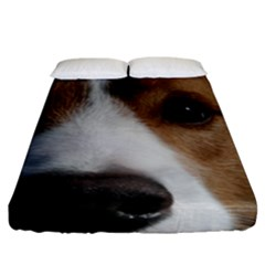 Red Border Collie Fitted Sheet (King Size)
