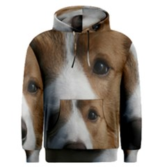 Red Border Collie Men s Pullover Hoodie
