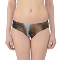 Red Border Collie Hipster Bikini Bottoms