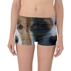 Red Border Collie Reversible Bikini Bottoms