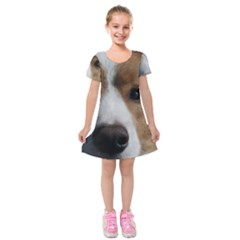 Red Border Collie Kids  Short Sleeve Velvet Dress