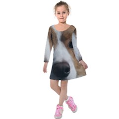 Red Border Collie Kids  Long Sleeve Velvet Dress