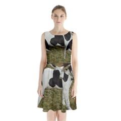 German Short Haired Pointer Puppy Sleeveless Chiffon Waist Tie Dress
