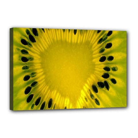 Kiwi Fruit Slices Cut Macro Green Yellow Canvas 18  X 12