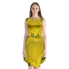 Kiwi Fruit Slices Cut Macro Green Yellow Sleeveless Chiffon Dress