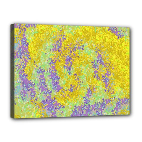 Backdrop Background Abstract Canvas 16  x 12