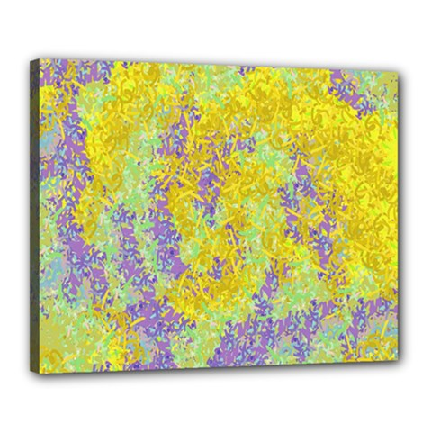 Backdrop Background Abstract Canvas 20  x 16