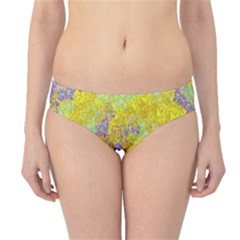 Backdrop Background Abstract Hipster Bikini Bottoms