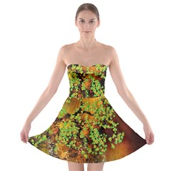 Backdrop Background Tree Abstract Strapless Bra Top Dress