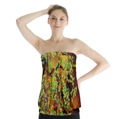 Backdrop Background Tree Abstract Strapless Top