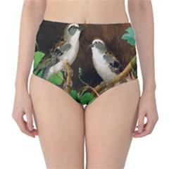 Backdrop Colorful Bird Decoration High-Waist Bikini Bottoms