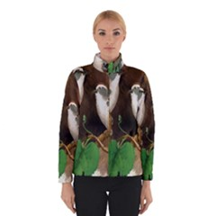 Backdrop Colorful Bird Decoration Winterwear