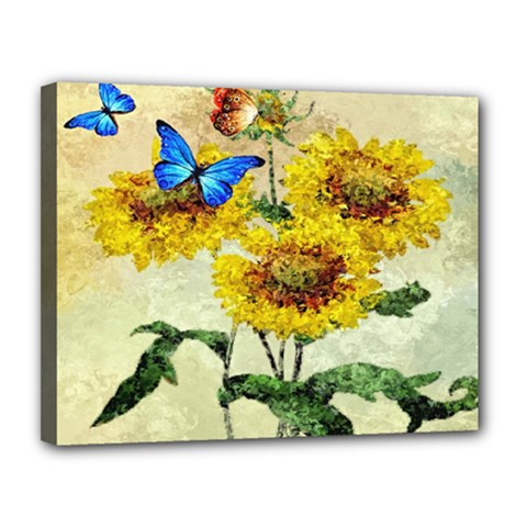 Backdrop Colorful Butterfly Canvas 14  X 11