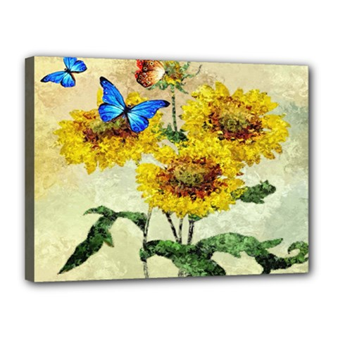 Backdrop Colorful Butterfly Canvas 16  x 12