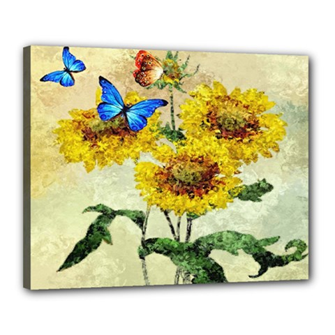 Backdrop Colorful Butterfly Canvas 20  x 16