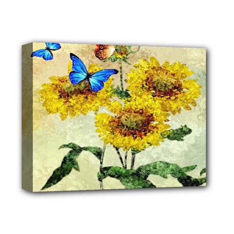 Backdrop Colorful Butterfly Deluxe Canvas 14  x 11