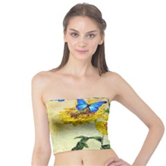 Backdrop Colorful Butterfly Tube Top