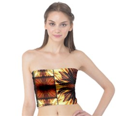 Background Pattern Tube Top