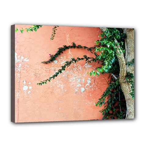 Background Stone Wall Pink Tree Canvas 16  x 12