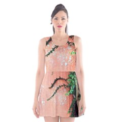 Background Stone Wall Pink Tree Scoop Neck Skater Dress