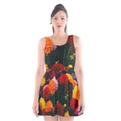 Beautifull Flowers Scoop Neck Skater Dress