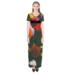 Beautifull Flowers Short Sleeve Maxi Dress