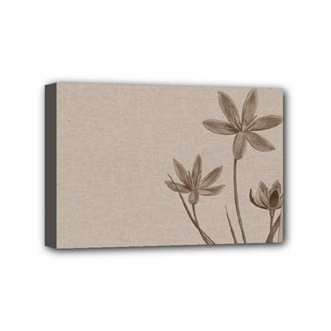 Background Vintage Drawing Sepia Mini Canvas 6  x 4