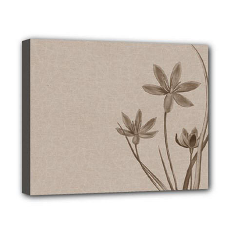 Background Vintage Drawing Sepia Canvas 10  x 8