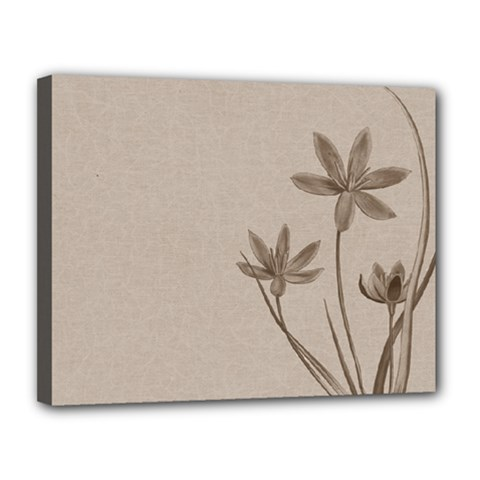 Background Vintage Drawing Sepia Canvas 14  X 11