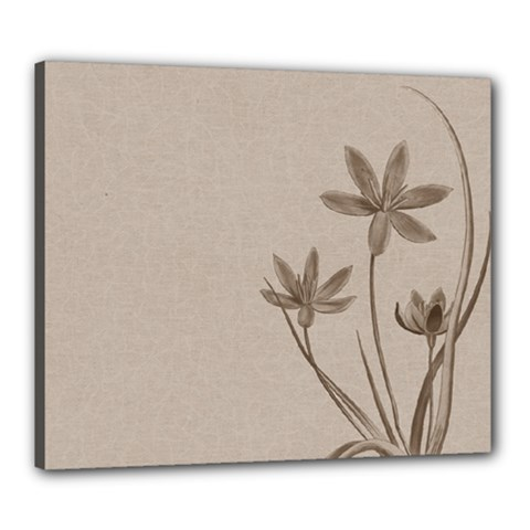 Background Vintage Drawing Sepia Canvas 24  x 20