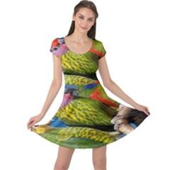 Beautifull Parrots Bird Cap Sleeve Dresses