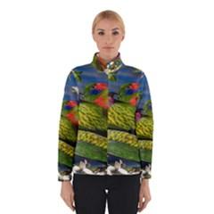 Beautifull Parrots Bird Winterwear