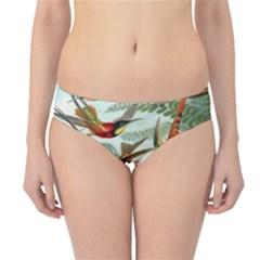 Beautiful Bird Hipster Bikini Bottoms