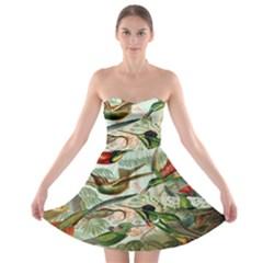 Beautiful Bird Strapless Bra Top Dress