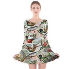 Beautiful Bird Long Sleeve Velvet Skater Dress